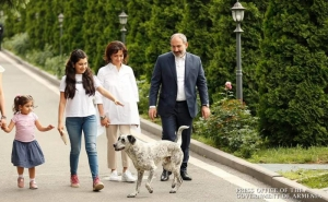Pashinyan and Family Members Feel Well: Spokesperson