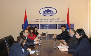 Foreign Minister of Artsakh Met with the High Commissioner for Diaspora Affairs of the Republic of Armenia
